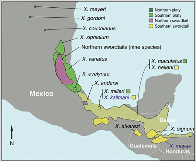 mexico_map001.jpg